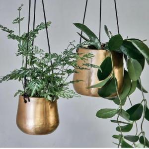 Atsu Brass Hanging Planter – Small