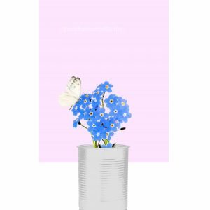 Forget-Me-Not with Butterfly on Flower Print – Soft Pink