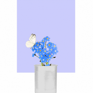 Forget-Me-Not with Butterfly on Flower Print – Perwinkle