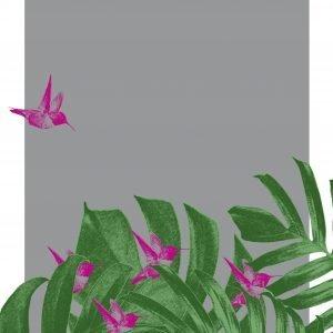 Tropical Humming Bird Dive Print